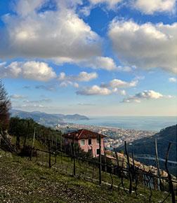 Itinerario 6 - Cammino per Montallegro, fino all'Anchetta